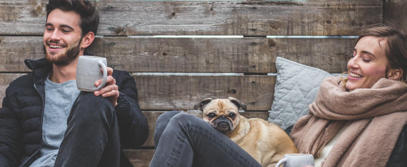 Universo PET: pense o cão como um membro da família