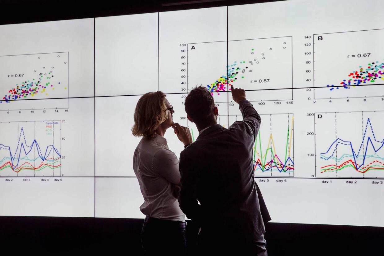 Dados primários e secundários: entenda seu impacto na tomada de decisão