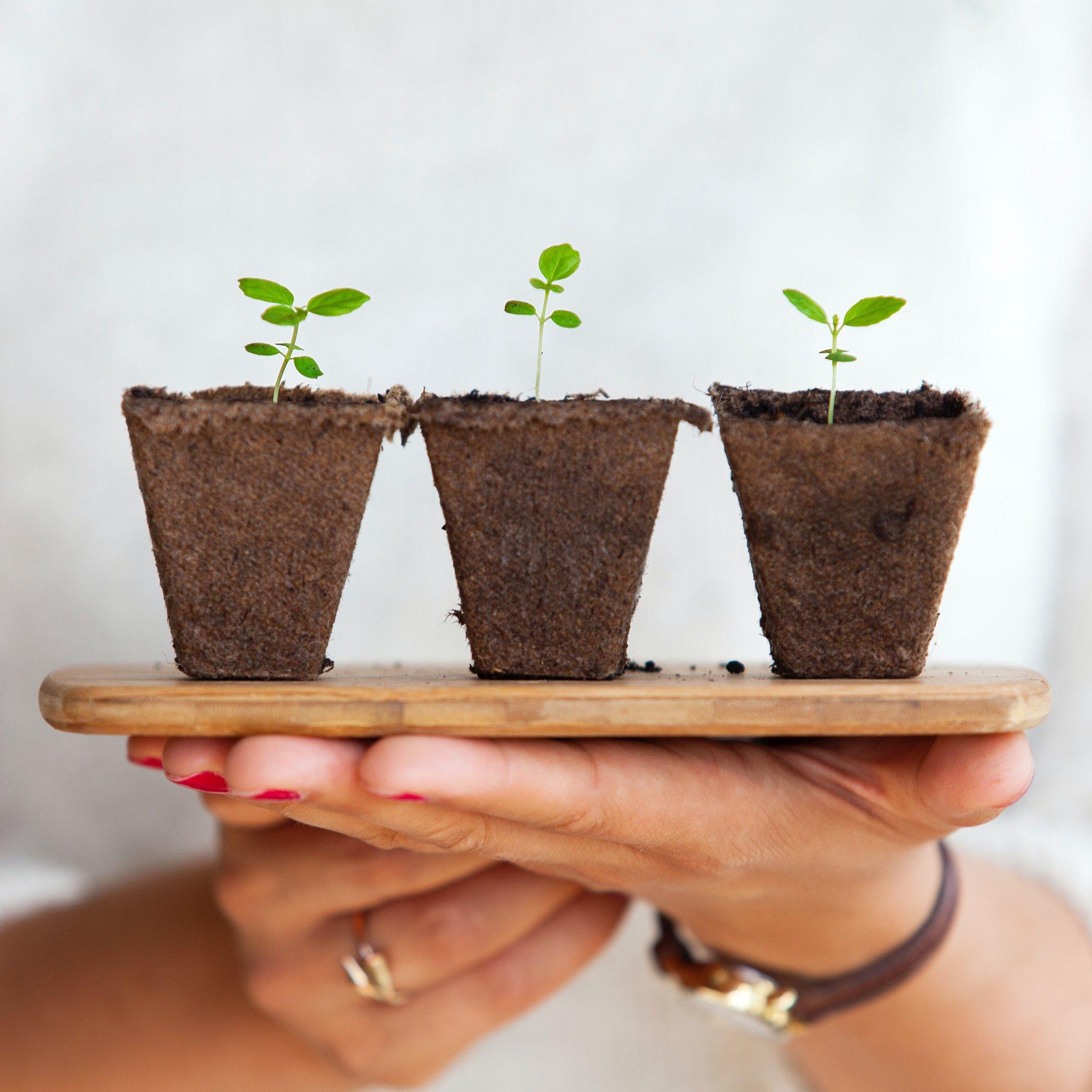 Por que a sustentabilidade importa?